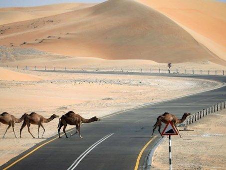 Jak się poruszać po Egipcie?